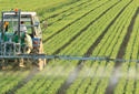 Formulas for Spraying Multiple Nozzles Over the Row
