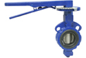 Butterfly Valve Buyer's Guide