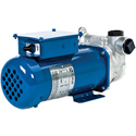 Fill-Rite DEF Pumps