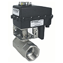 Stainless 24 Volt Ball Valves