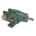 Roper Series A Cast Iron Gear Pumps