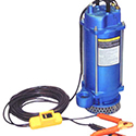 Warren Rupp 12 Volt Submersible Well Pump