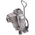 Banjo Stainless Pedestal Pumps